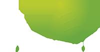 Logo TV Enschede FM - groen nieuw